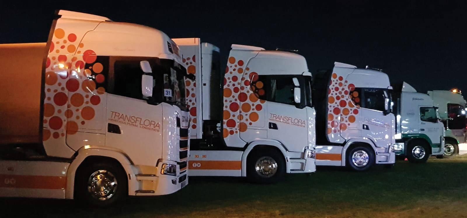 five-newey-lorries-parked.jpg